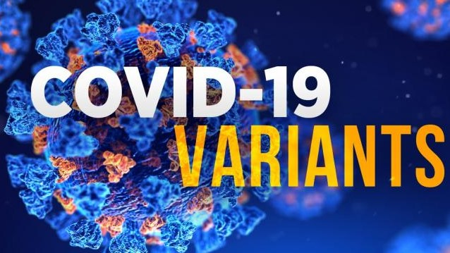Different Variants of Covid-19 Virus