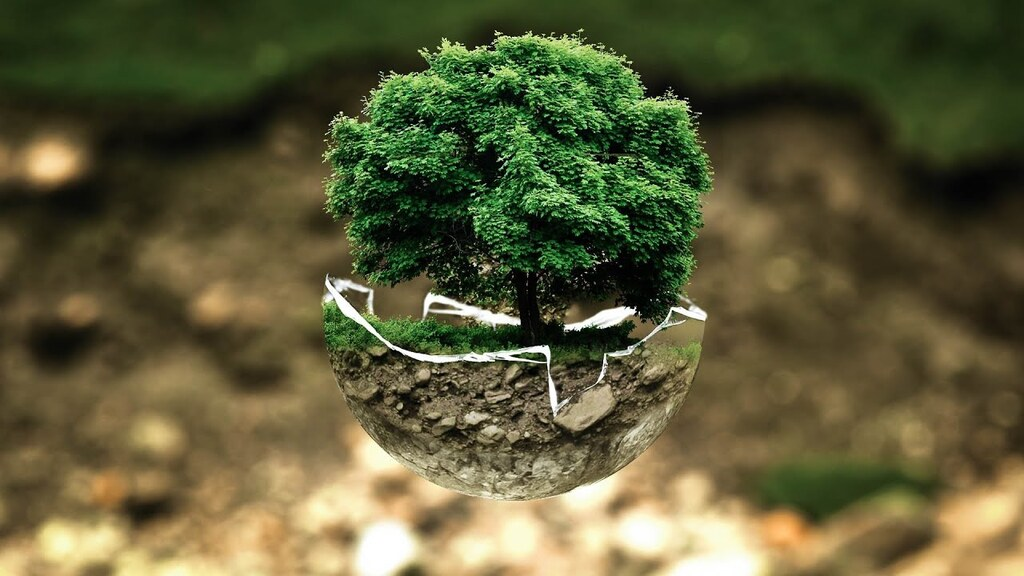 ecolinguistics,Tree is life not only fpr human but for all species. source Tomedes